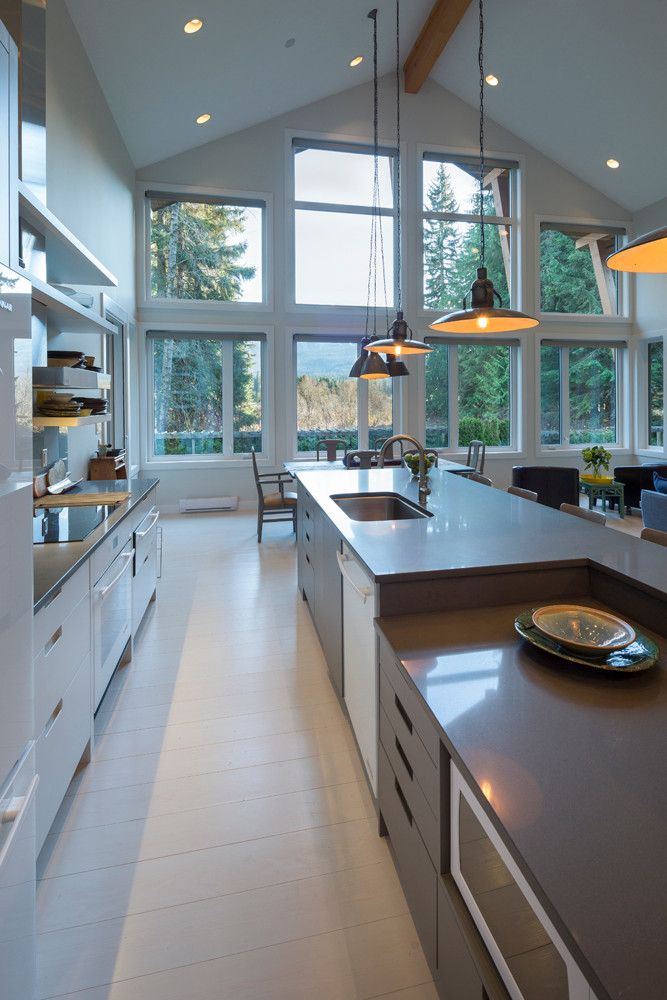 Whistler-Contemporary-modern- industrial kitchen-open concept-white gray-vaulted ceiling (4)