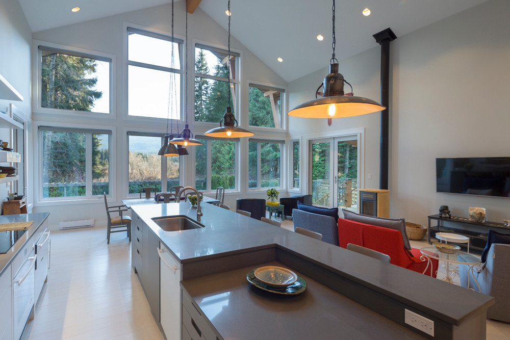Whistler-Contemporary-modern- industrial kitchen-open concept-white gray-vaulted ceiling (5)