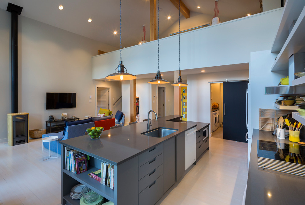 Whistler-Contemporary-modern- industrial kitchen-open concept-white gray-vaulted ceiling-loft studio (1)